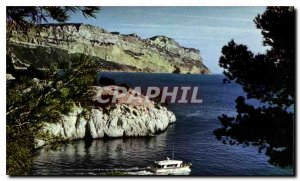 Modern Postcard A rose has the boutonniere of Provence Cassis Sea creeks in t...