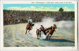 Bull-Dogging a Wild Steer