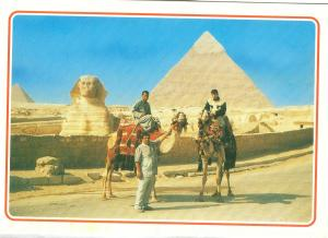 Egypt, Giza, Camel driver near the Sphinx and Khafre Pyramid, unused Postcard