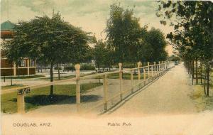 Douglas Park Arizona Public Park 1908 Postcard PCK Series Koeber 5187