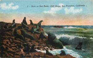 San Fransisco~Cliff House Seals on Rocks~Big Grandpa~Ocean Waves~Mitchell 1914