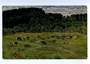 224877 RUSSIA Yuon Herd horses St.Eugenie #6258 old postcard
