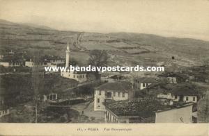 greece, VERIA VEROIA, Panorama with Mosque, Islam (1918)