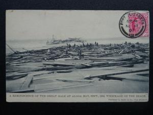 South Africa Port Elizabeth, BEACH WRECKAGE, GREAT GALE ALGOA BAY 1902 c1907 PC