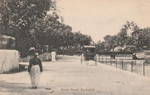 Barbados - View along River Road - DB