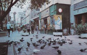 CURACAO, 1940-1960´s; De Ruyterplein At One Entrance To Heerenstraat, Main S...