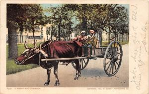 E25/ Black Americana Postcard 1906 Chattanooga Tenn Horseless Carriage Kids 17