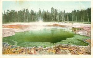 Yellowstone Park~Emerald Spring~Upper Geyser Basin~Detroit Publishing Phostint