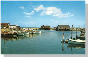 Nice Barnstable, Mass/Ma Postcard, Harbor Scene, Cape Cod