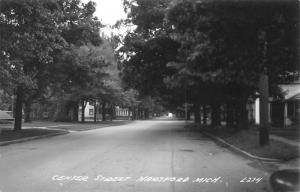 HARTFORD Michigan~Trees on Both Sides of Residential Center Street~RPPC 1940s