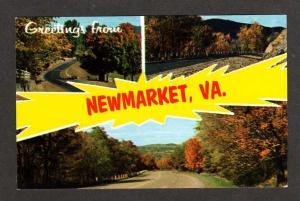 VA Greetings from NEWMARKET VIRGINIA Postcard PC