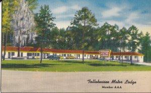 TALLAHASSEE FL - Tallahassee Motor Lodge, 1940/50s - LEON CO