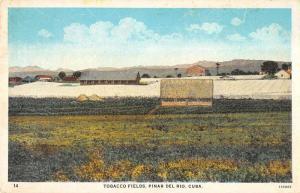 Pinar Del Rio Cuba panoramic birds eye view Tobacco Fields antique pc ZA440616