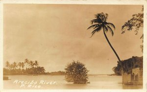 Puerto Rico Arecibo River Real Photo Postcard