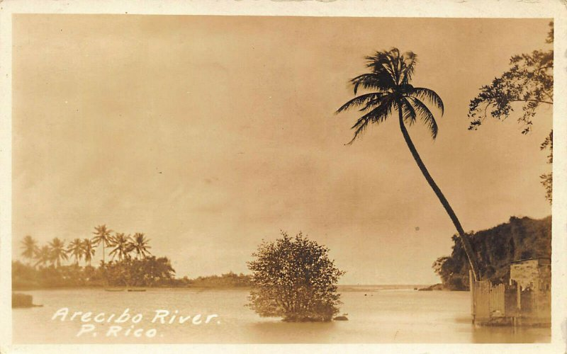 Puerto Rico Arecibo River Real Photo Postcard