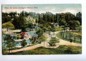214113 ARGENTINA BUENOS AIRES ZOO garden Vintage postcard