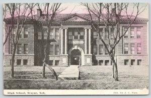 Wayne Nebraska~High School~Twisted Trees Cross Each Other Out Front~1910 JC Nuss