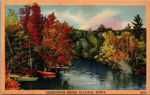 Algona IA~Rowboats on Edge of the Des Moines River~Fall Colors Greetings 1940s