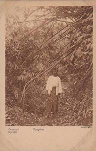 Woman Standing In The Middle Of The Woods, Djungel, Bangelan, Asia, 1900-1910s