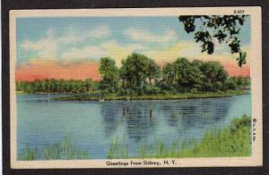 NY Greetings from SIDNEY NEW YORK PC Linen Postcard
