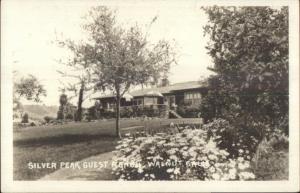 Walnut CA Silver Peak Guest Ranch c1915 Real Photo Postcard