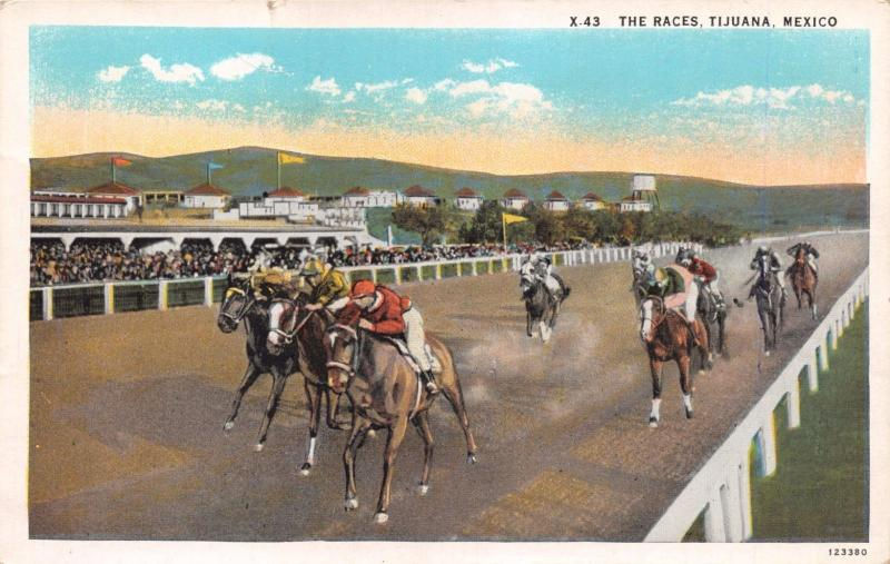 TIJUANA MEXICO THE HORSE RACES~RACETRACK~STANDS POSTCARD 1920s