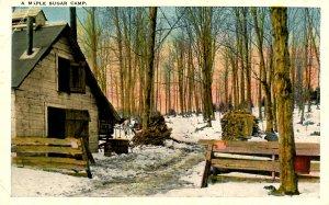 VT - Maple Sugaring. Camp, Orchard Scene   (crease)