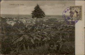 Limon Costa Rica Uvita - Used Postcard