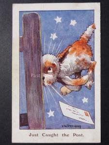 V.W.Sternberg DOG JUST CAUGHT THE POST.... Comic PC c1936 J.Salmon 3784