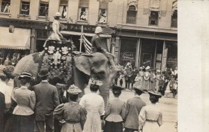 RP: Elephant in Main Street Circus Parade , 00-10s