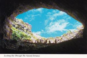 New Mexico Carlsbad Looking Out Through Natural entrance Carlsbad Caverns Nat...