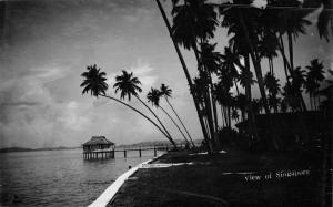 Singapore Malaysia Tropical Pier Hut Scenic Real Photo Antique Postcard K61109