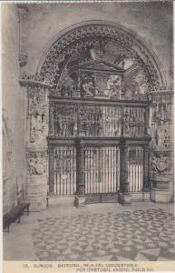 Reja del Condestable por Cristobal Andino, Siglo XVI, Catedral, Catedral, Bur...