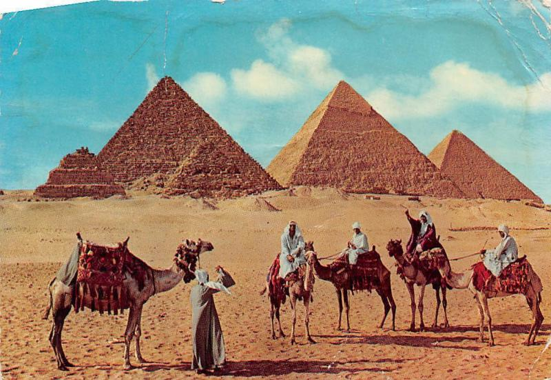 Egypt Pyramids of Giza Riding Camels