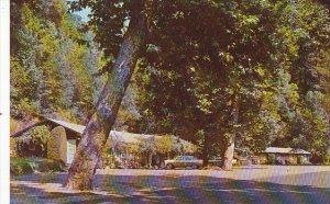 This Fine Lodge Big Sur Rivrt California