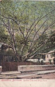 Bermuda Hamilton Rubber Tree and Drug Store