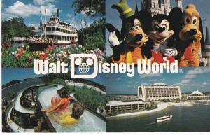 Post Card United States Florida Walt Disney World