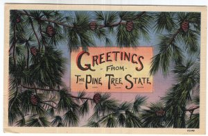 Greetings From The Pine Tree State