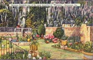 BROWNIE GARDENS ... View shows the beautiful & elegant garden / Wormsloe 1950s
