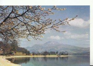 Scotland Postcard - Loch Lomond and Ben Lomond from Luss - Dunbartonshire TZ8230