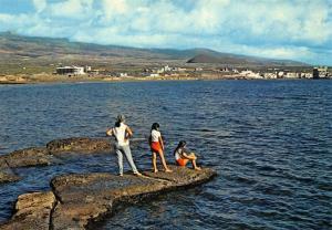 Spain El Medano Tenerife General view Postcard