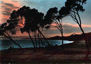 France Cote d'Azur Coucher de Soleil Sunst Landscape Postcard