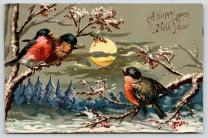 New Year~Red Breast Birds on Snowy Birch Trees~Clouds Cross Full Moon~Emboss~'08