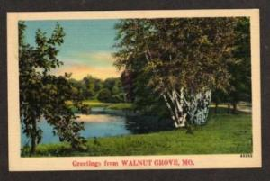 MO Greetings from WALNUT GROVE MISSOURI Postcard Linen