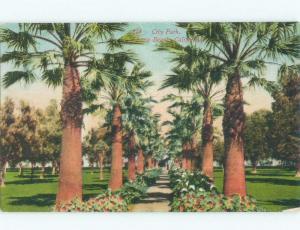Unused Divided-Back PARK SCENE Long Beach - Los Angeles California CA c8194