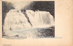 Beaverkill Falls Parksville NY Unused
