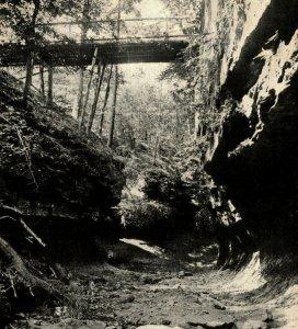 Devil's Punch Bowl, The Shades, Indiana, postcard, bridge 1920 Postcard