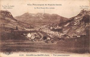 France Salins-les-Bains (Jura) Vue panoramique Fort St-Andre Mont Poupet