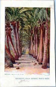 Puerto Rico Postcard 1905 Cocoanut Palm Avenue MH