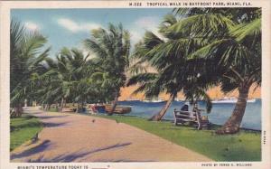 Florida Miami Tropical Walk In Bayfront Park Miami's Temperature Today Is